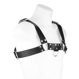 Bodyharness